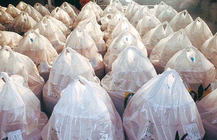 La France, premier exportateur mondial de semences.© F. Pierrel/Pixel image