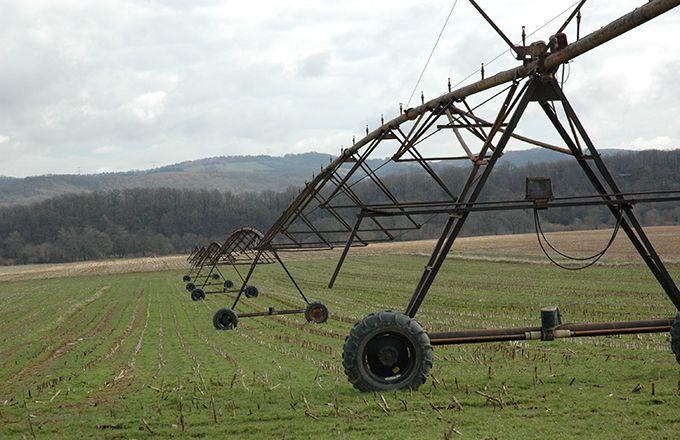 Les sondes capacitives pour mieux réguler l'irrigation. © Catherine Milou/Pixel Images
