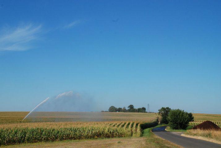 En été, l'eau d'irrigation ne percole que rarement, démontrant une bonne utilisation de la ressource par les cultures. © N. Chem