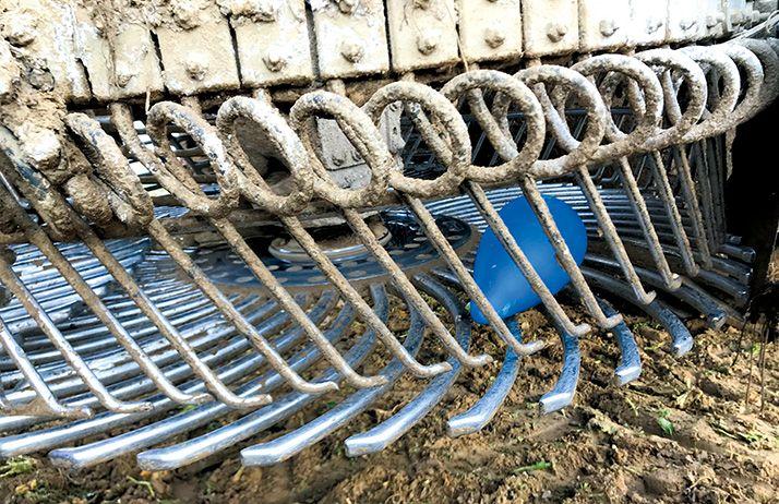 La betterave suit le circuit classique comme les autres dans l'arracheuse. Photo: DR