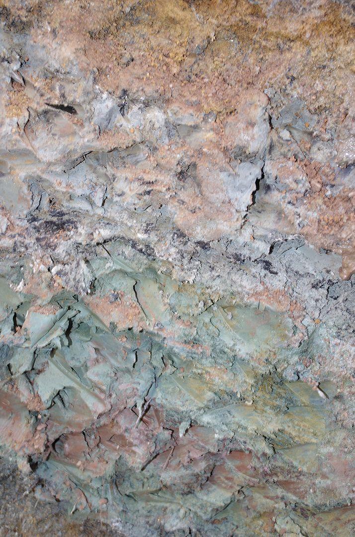 Argile du Ségala (Aveyron) qui présente ici un aspect collant par manque  de vie du sol.