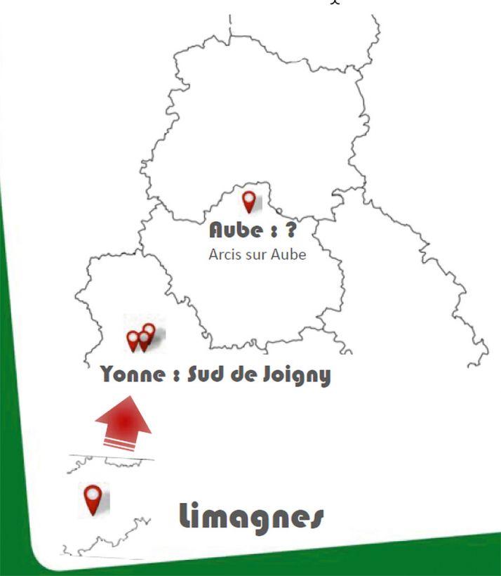 Si «Lixus juncii» était déjà bien identifié en Limagnes en 2018, il a été observé pour la première fois dans l'Yonne et sa présence suspectée dans l'Aube.