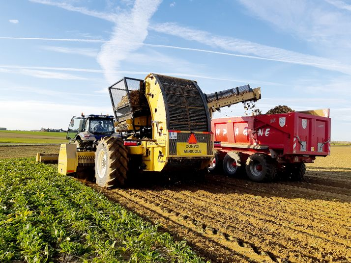Auparavant séparées, l'effeuilleuse-scalpeuse et l'arracheuse sont désormais entraînées par un seul et même tracteur. Ce qui facilite la logistique et réduit encore le coût du chantier d'arrachage comme le risque de compaction du sol, a priori.