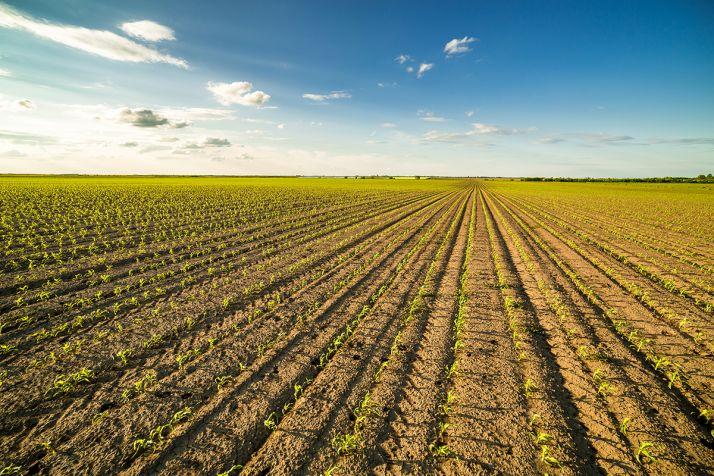 Quali'Cible de Syngenta s'élargit aux herbicides à base de S-métolachlore. Initialement, l'OAD a été développé pour l'utilisation d'herbicides à base de prosulfocarbe.