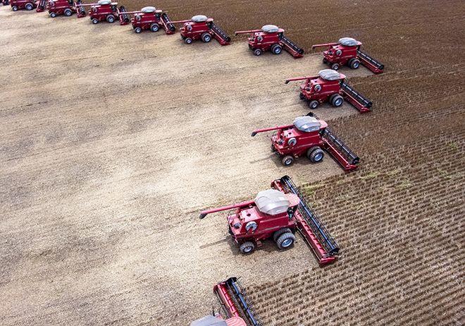 Brésil : des bons chiffres pour la récolte de maïs et de soja Adobestock_178834721