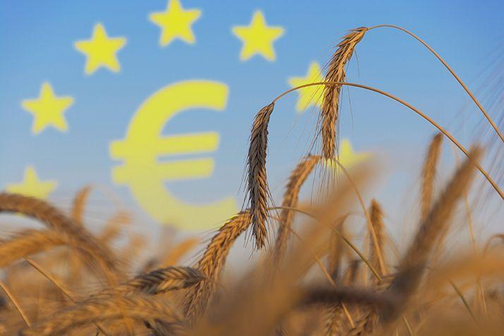 Et si la crise sanitaire était une chance pour la Politique agricole commune ? ©Bluedesign/AdobeStock