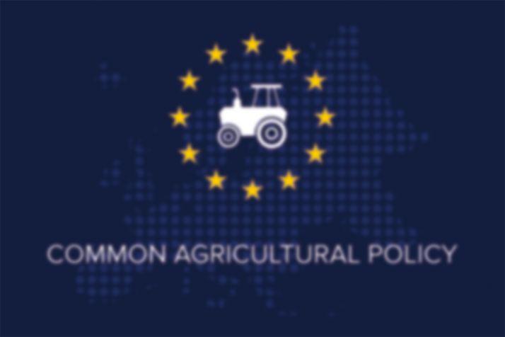 La politique agricole commune : un brouillard made in Europe