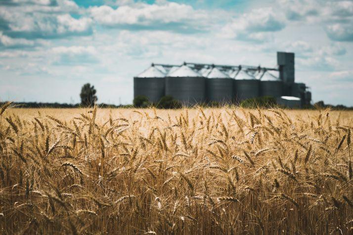 La thermométrie connectée pour réduire les coûts de stockage des grains. ©Sergii Mostovyi/Adobe Stock