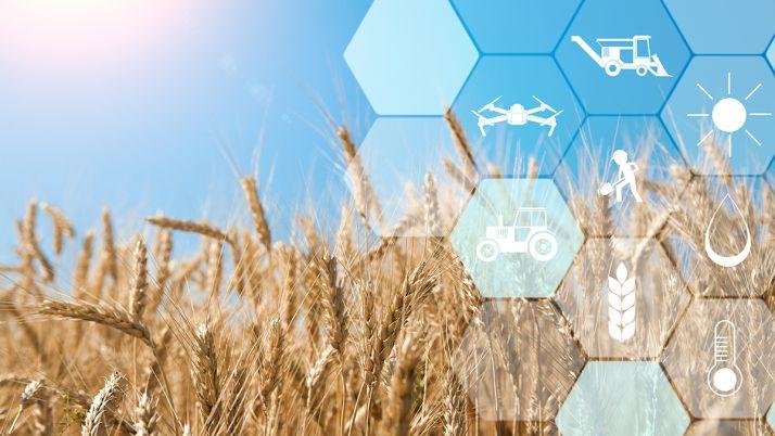 Depuis 1 an, Aladin.farm, le génie de l'agriculture, est testée dans neuf coopératives pilotes.