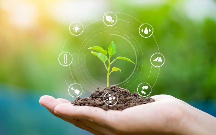 """Dans un communiqué commun, les filières grandes cultures et leurs instituts techniques, Arvalis, ARTB, ITB et Terres Inovia, ont annoncé vouloir s'engager dans la démarche du """"label bas carbone""""."""