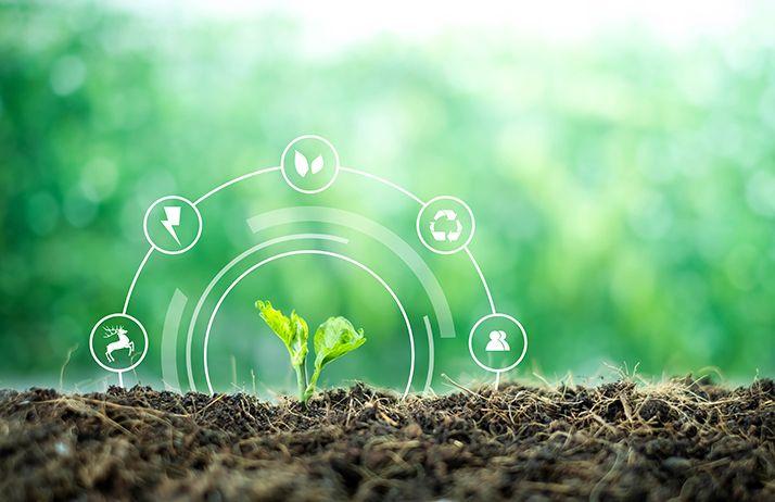 Greenback : une agence pour apprécier la santé des sols agricoles. © Yuttana Studio/Adobe Stock