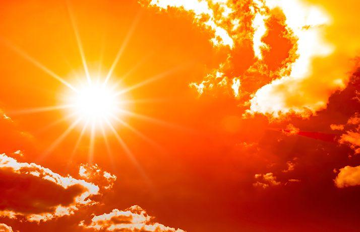 Août 2020, encore des records de températures. ©John Smith/Adobe Stock