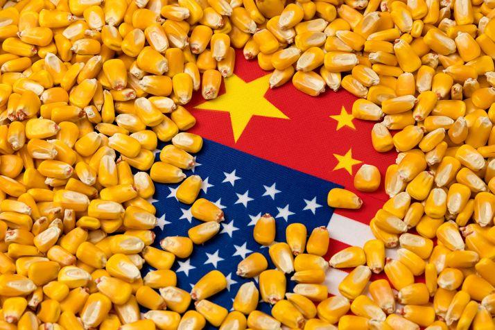 Quelles stratégie la Chine va-t-elle adopter pour ses approvisionnements en maïs ?