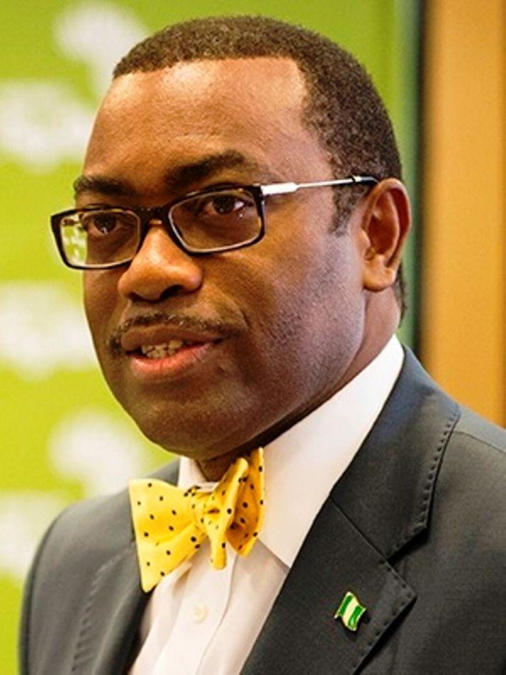 Akinwumi Adesina, président de la banque africaine de développement. © D. Aliyou