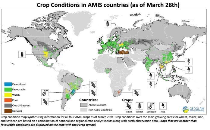 amis_crop_monitor.jpg