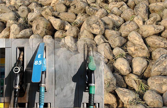 Éthanol : un bel avenir menacé par l'Europe. © JLLH et Björn Wylezich /Fotolia