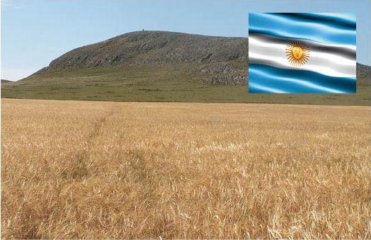 ble_argentine.jpg