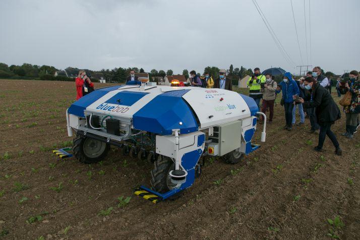Désherbage mécanique betteraves robot. Crédit: Willy Deschamps_Pixel