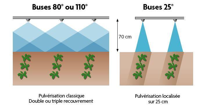 buses_80_ou_110_vs_buses_25.jpg