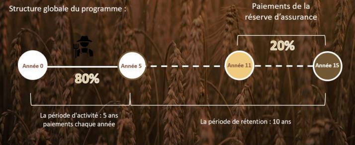 Principe de reserve d'assurance de Soil Capital Carbon. Crédit photo : Soil Capital