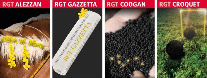 Nouveautés colza RAGT semences
