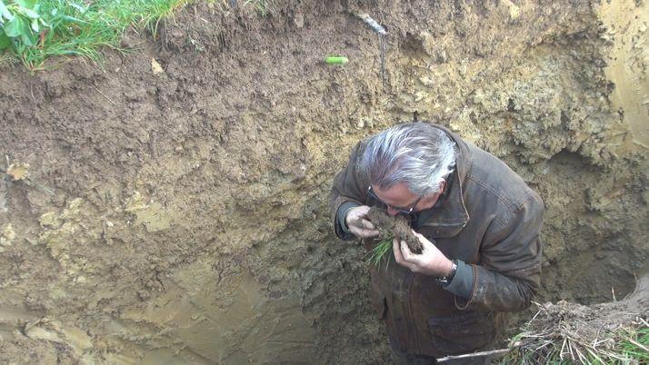 Le premier horizon du sol doit sentir les champignons. Crédit : Mathieu LECOURTIER / Média&Agriculture
