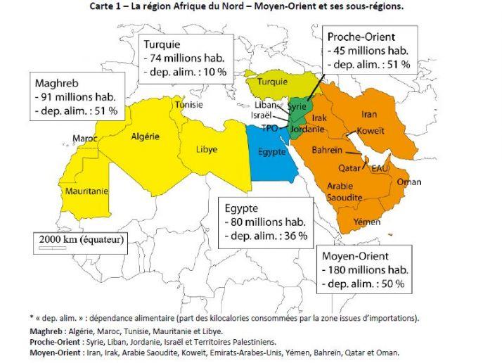 dependance_alimentaire_afrique_du_nord_moyen_orient_inra_pluriagri.jpg
