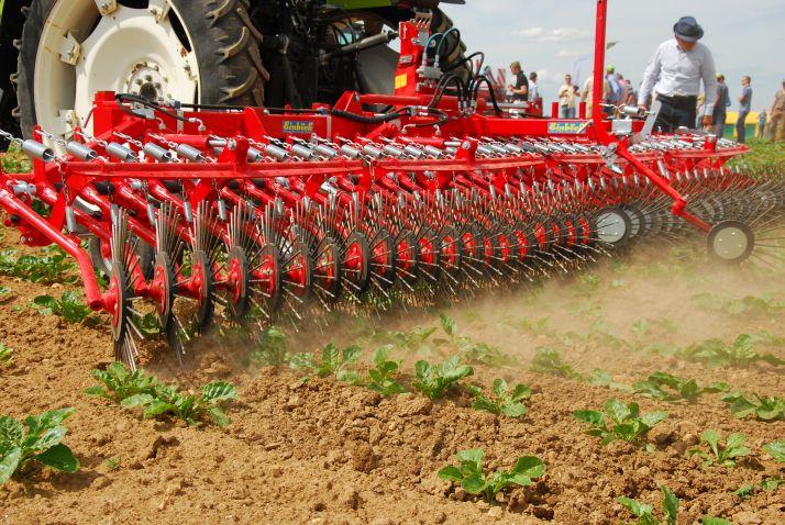 Le recours au désherbage mécanique permet de réduire de 25 à 50 % l'IFT herbicide de la betterave. © M. Lecourtier/Pixel Image