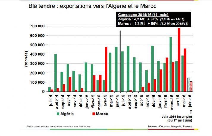 Blé tendre : exportations vers l'Algérie et le Maroc
