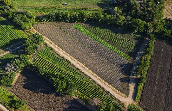 Les notaires veulent transformer le modèle foncier agricole français. ©Stefano Tammaro/Fotolia