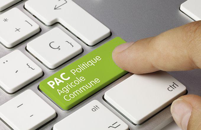 Pac : le dispositif apport de trésorerie activé. © Momius/Fotolia