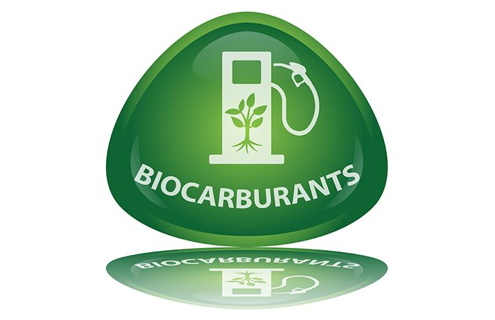 Bioéthanol :la France, leader européen de la production.© Pro web design/Fotolia