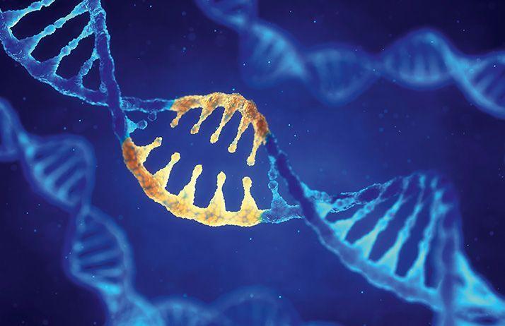CRISPR, deux doigts coupent fin. © Nobeastsofierce/Fotolia