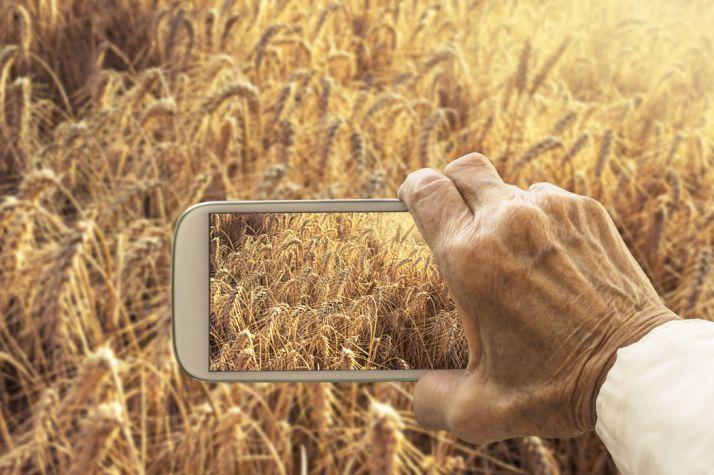 Le Big data au service de quelle agriculture ? © Maticsandra/Fotolia