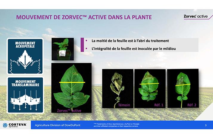 Source : Dupont - Stine 2013