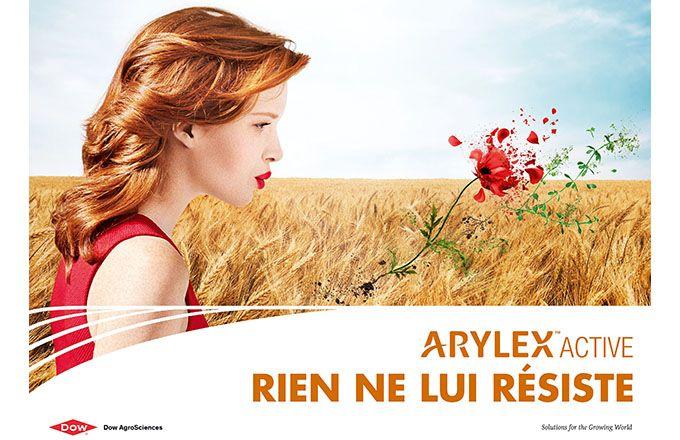 Dow AgroSciences lance une innovation herbicide antidicotylédone céréales, à base de la nouvelle substance ArylexTM Active. © Dow AgroSciences