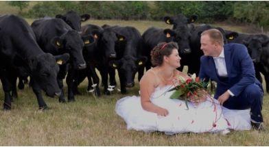 mariage_a_la_ferme.jpg