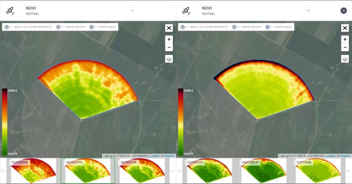 Le traitement NDVI des images satellites est un bon outil pour aider l'agriculteur à identifier un problème dans ses parcelles. Ici, un défaut de pression sur un pivot d'irrigation pénalisant les bord extérieurs de la parcelle. Crédit photo : Précifield