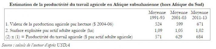 productivite_du_travail_agricole_en_ass.jpg
