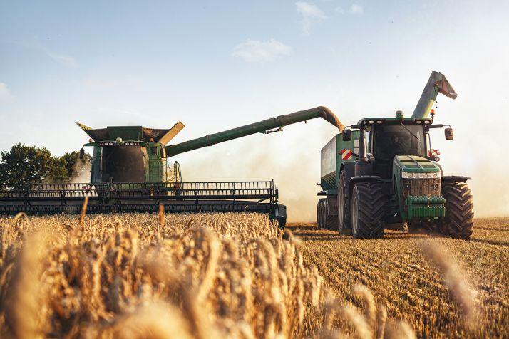 Les rendements de blé tendre attendus en hausse pour la campagne 2021. ©Pixel6TM
