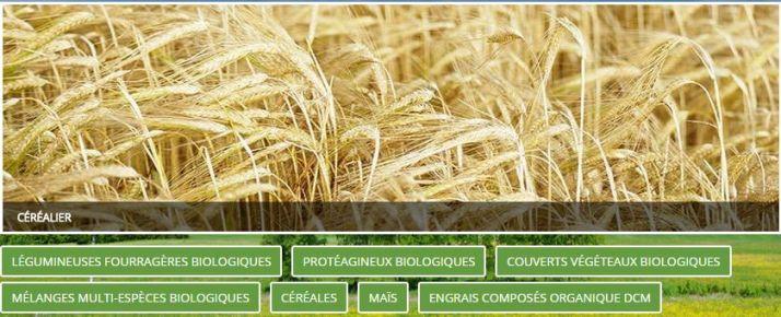 semenes_biologiques_comande_en_ligne.jpg