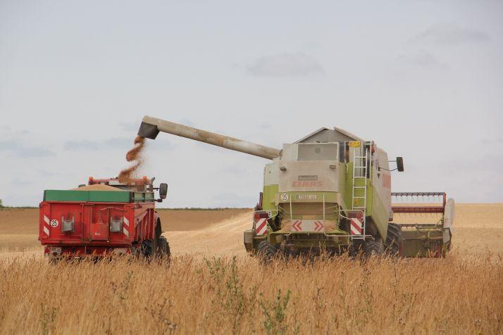Une baisse de la production de blé tendre attendue. © H.Sauvage/Pixel Image