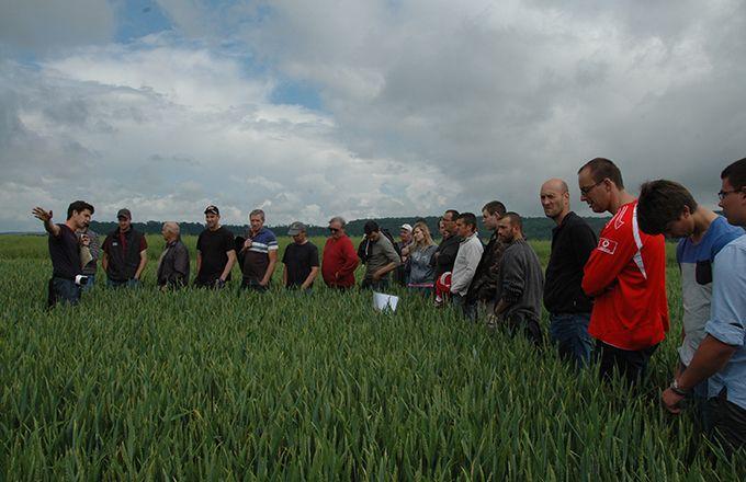Xavier Rouyer (à g.), conseiller agronomie à la chambre d'agriculture de Meuse, a présenté l'expérimentation menée sur la ferme