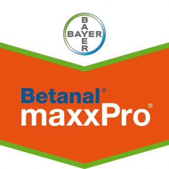 betanal-maxxpro_bt_rvb.jpg
