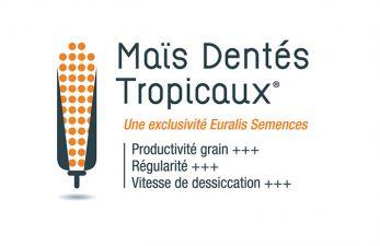 logo_euralis_dentes.jpg