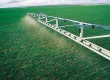 La problématique de la résistance des graminées et des dicotylédones aux herbicides est un enjeu majeur sur le territoire de la coopérative Cap Seine. © F. Pierrel/Pixel image
