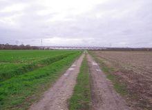 L'agriculture biologique est encore loin d'être le modèle unique de production en France… et ne le sera jamais selon Éric Birlouez, sociologue. Photo : Pixel6TM