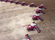 Brésil : des bons chiffres pour la récolte de maïs et de soja. ©AlfRibeiro/AdobeStock