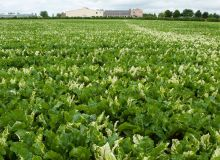 Pascal Xicluna / agriculture.gouv.fr