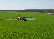 Lancé dans un premier temps pour la culture des céréales, Qualipulvé pourra ensuite être décliné sur d'autres cultures. Photo : Diyanadimitrova - Fotolia